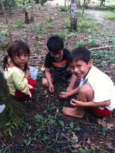 kids planting in the amazon on chakra alegría de amor